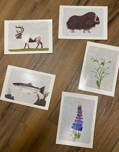 Set of 5 Alaska Postcards