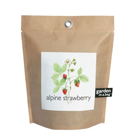 Potting Shed Creations - Strawberry Garden In A Bag