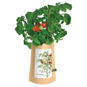 Potting Shed Creations - Tomato Garden In A Bag