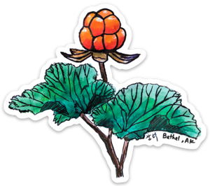 Salmonberry Cloudberry Sticker