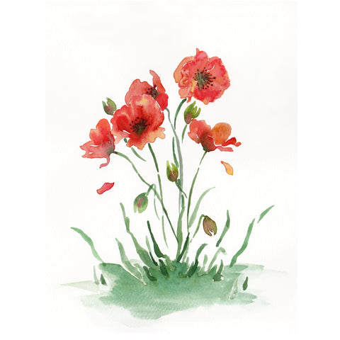 Poppies Watercolour Painting