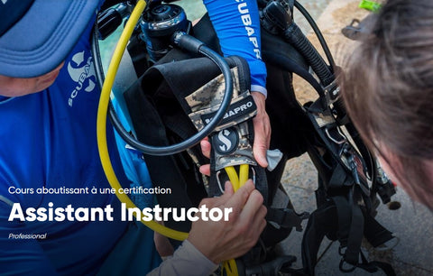 Assistant-Instructeur PADI (PADI AI)