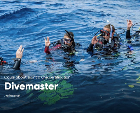 Inscription cours de Divemaster PADI