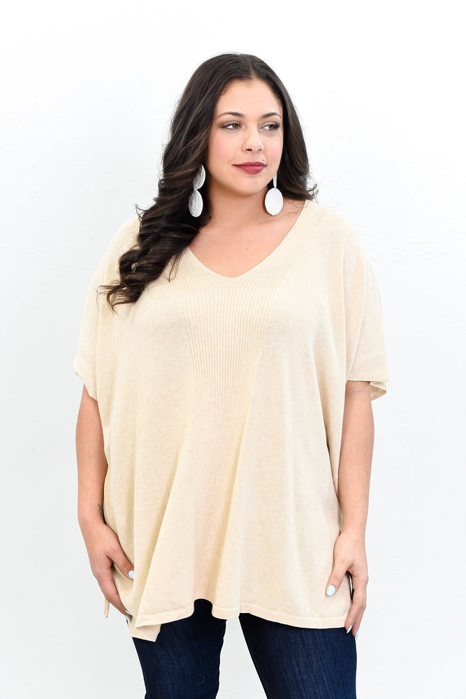 A Song About Love Oatmeal Solid V Neck Top (One Size 14-20) - B10659OA