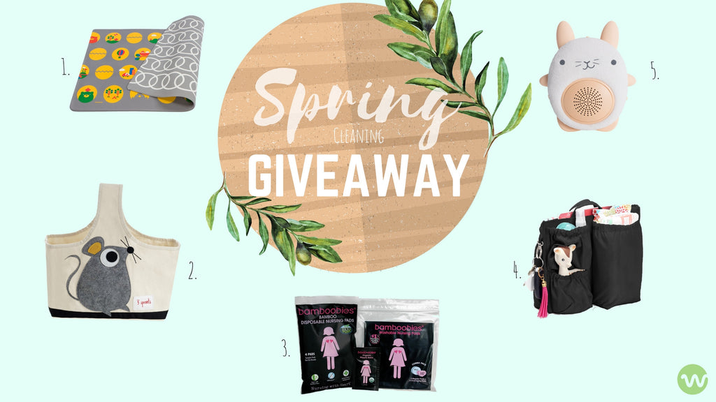 Spring Cleaning Giveaway - Enter to Win!