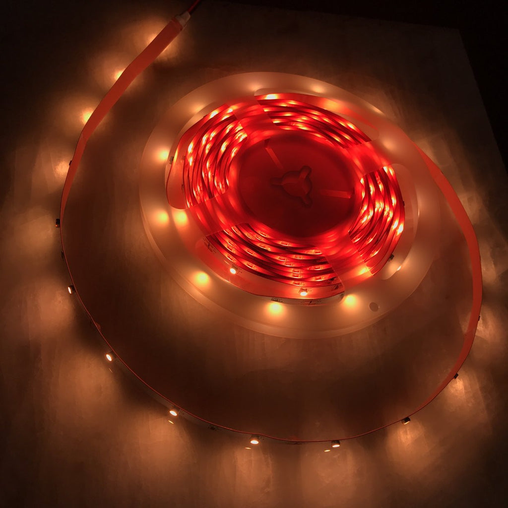 2.4w High CRI LED Strip~ Protea Series| Wired4Signs USA |
