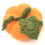 Buy Cotton Pod Crochet Kit - Pumpkin