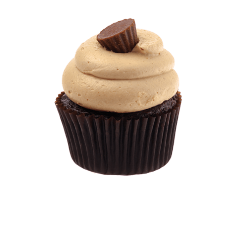 Chocolate Peanut Butter Party Cupcake