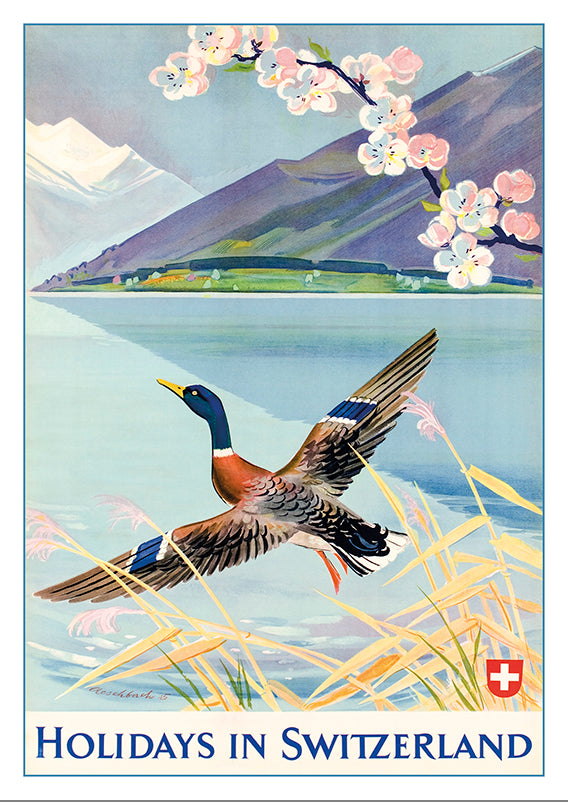 A-10579 - HOLIDAYS IN SWITZERLAND - Poster by Hans Aeschbach - 1945