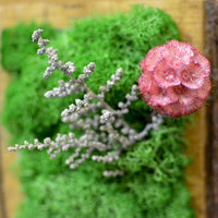 A Frosty Floret Tabletop Moss Frame In Wooden Bark