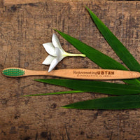 Biodegradable Bamboo Toothbrush (Green)