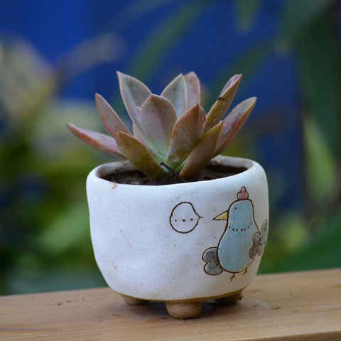 Cute Fat Hen Ceramic Pot