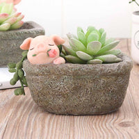 Cute Pig with Rose Resin Succulent Pot
