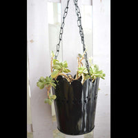 Black Cut-Work Hanging Planter With Chain