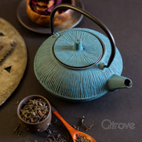 Line Blue Cast Iron Tea Pot
