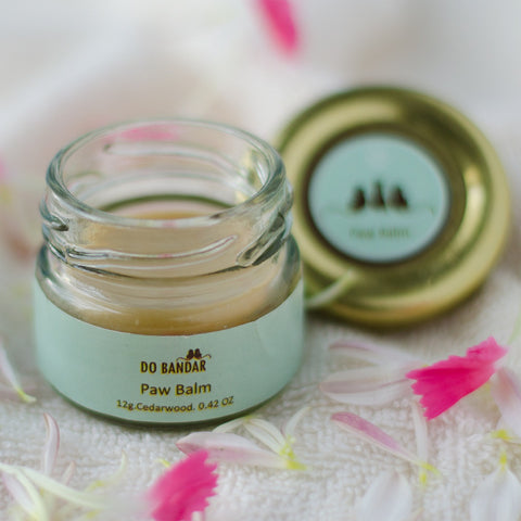 Paw Balm for Dogs