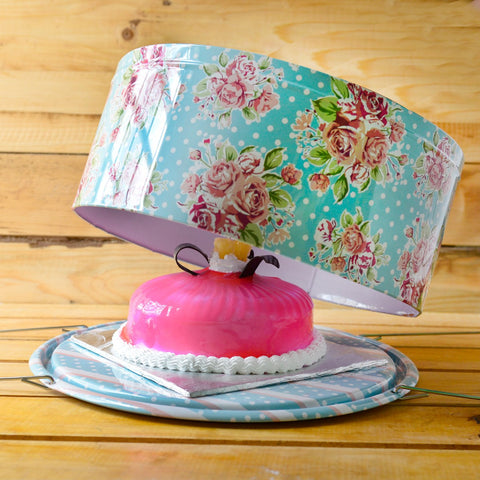 Cake Tin Carrier