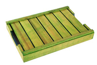 Elegant Green and Blue Coloured Wooden Serving Tray