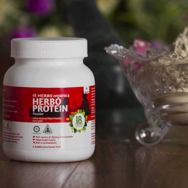 Herbo Protein Powder (100% Plant Protein , Non GMO) at Qtrove