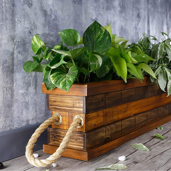 Indian Oak & Dark Walnut Handmade Double Partition Wooden Planter at Qtrove