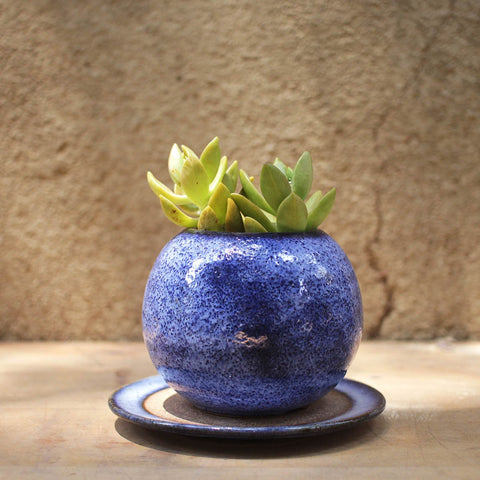 Ini - Stoneware Ceramic Table Planter (Blue)