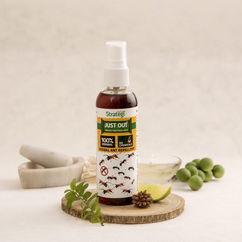 Herbal Ant Repellent Spray