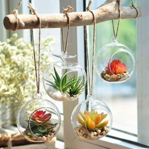 Mini Hanging Terraiums | DIY Kit