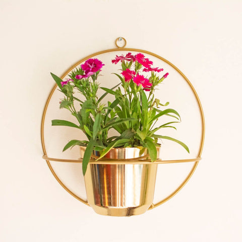 Norma Metal Wall Planter Gold