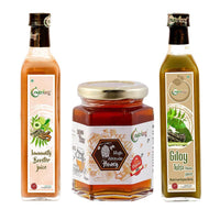 Immunity Booster 500ml, Giloy Tulsi Neem Juice 500ml & High Altitude Honey 250g (Combo of 3)