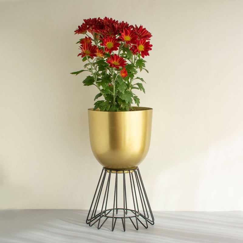 Iron Planter (Oslo Gold & Black)