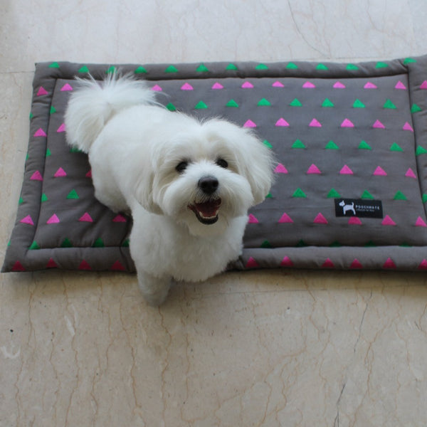 Pet Mat (Rainbow Triangle) at Qtrove