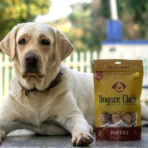 Dogsee Chew Puffies (100% Natural Himalayan Cheese Based Bite Sized Treats)