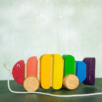 Eco-Friendly Wooden Rainbow Fish - Pull Along