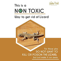 Safe Natural Lizard Repellent Spray Non Toxic Cruelty Free Herbal For Home Non Poisonous