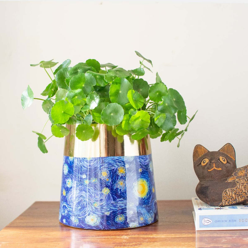 Starry Night Planter