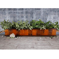 Tawny Yellow & Walnut Handmade Double Partition Wooden Planter