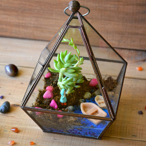 The Jamaican Farewell Terrarium DIY Kit