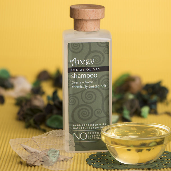 Oil of Olives Shampoo