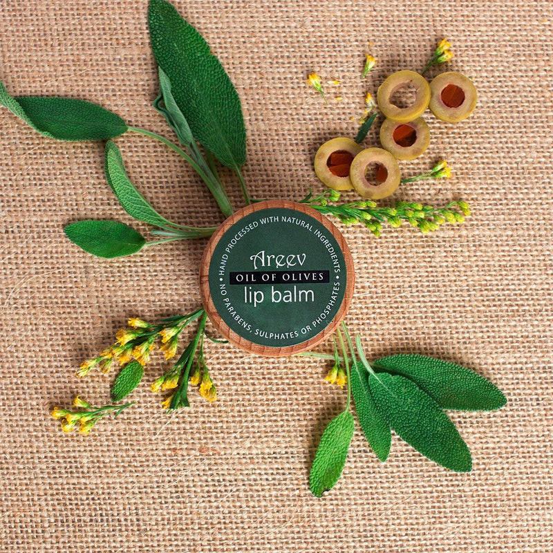 Bath And Beyond - Oil Of Olives Natural Lip Balm