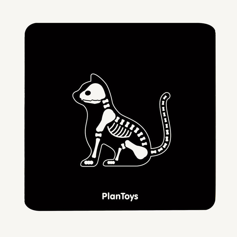 Plan Toys - Vet Set, Toys, Plan Toys - All Mamas Children