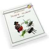 English / Arabic picture dictionary - Children learning