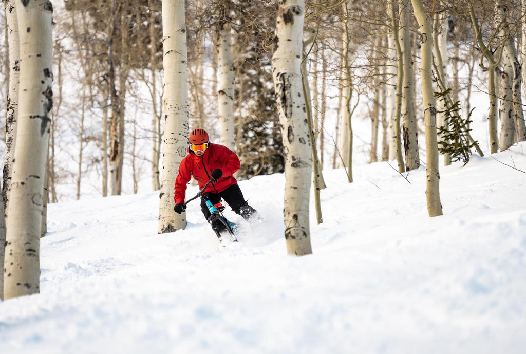 Do Vail Resorts Allow SNO-GO Bikes?