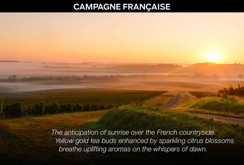 Campagne Française Essential Note Collection (citrus blossoms and golden tea) - PH Simply Skincare