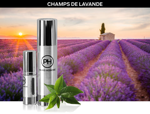CHAMPS DE LAVANDE COLLECTION
