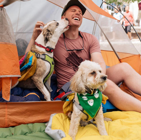 Ryan with two dogs in a tent
