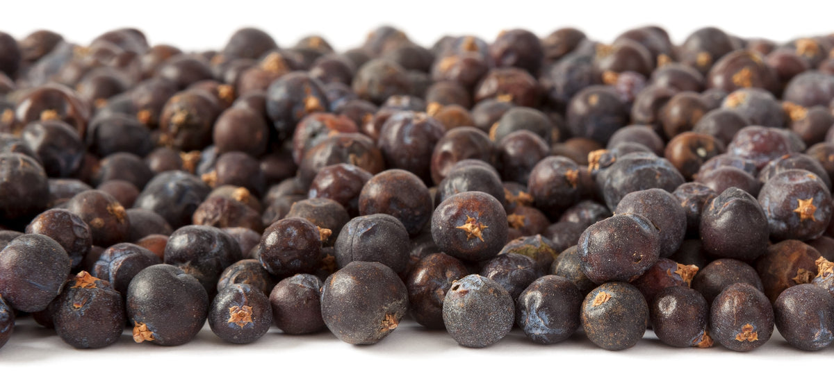 Juniper Berries are a Superfood