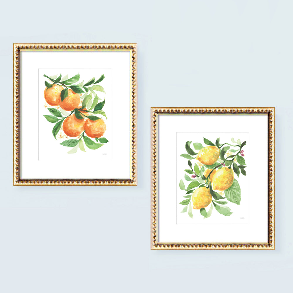 Watercolor Lemons and Oranges No. 1 Art Print Set