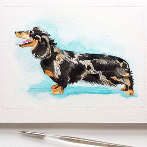 Custom Hand-painted Pet Portrait Illustration