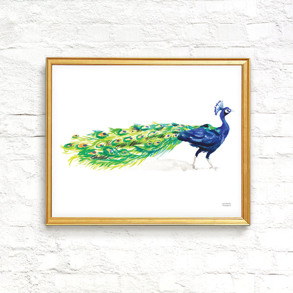 Watercolor Peacock Wall Art Print
