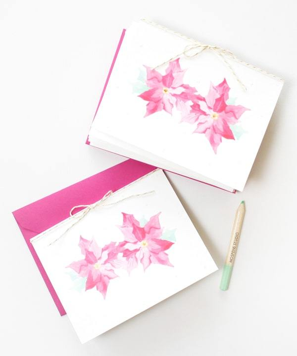 HAND PAINTED POINSETTIA CHRISTMAS CARDS